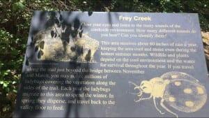 Feather Falls Frey Creek Ladybug Sign May 2017 Barebackpacking